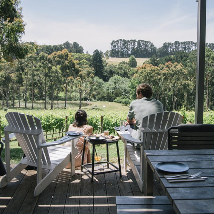 Chauffeured Wine Tasting Tour at Polperro Estate