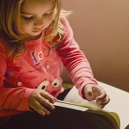 Curso online de psicología infantil: conducta y desarrollo