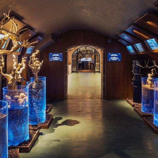 Visite et dégustation de vins aux Caves du Louvre