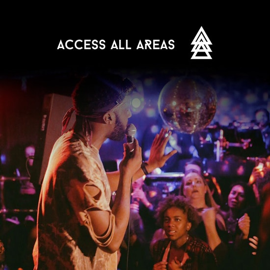 Access All Areas - Immersive Gig