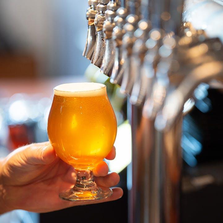 Brews n 'Baahhs': Goat Visit + Craft Beer Tasting Experience