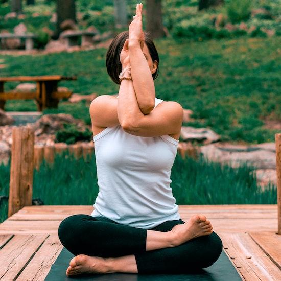 Yoga en ligne : Des cours en direct pour tous les niveaux !