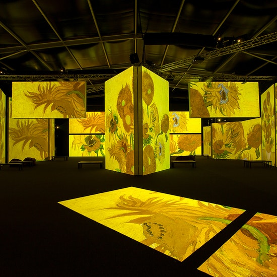 Toluca   Van Gogh: Alive - Una experiencia multisensorial inmersiva