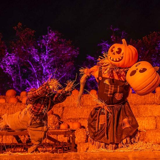 Haunt O' Ween LA: An Immersive Halloween Experience