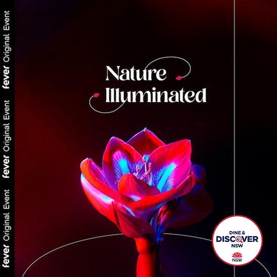 Nature Illuminated: Life of the Seasons