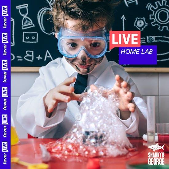 Family Home Lab   Fever