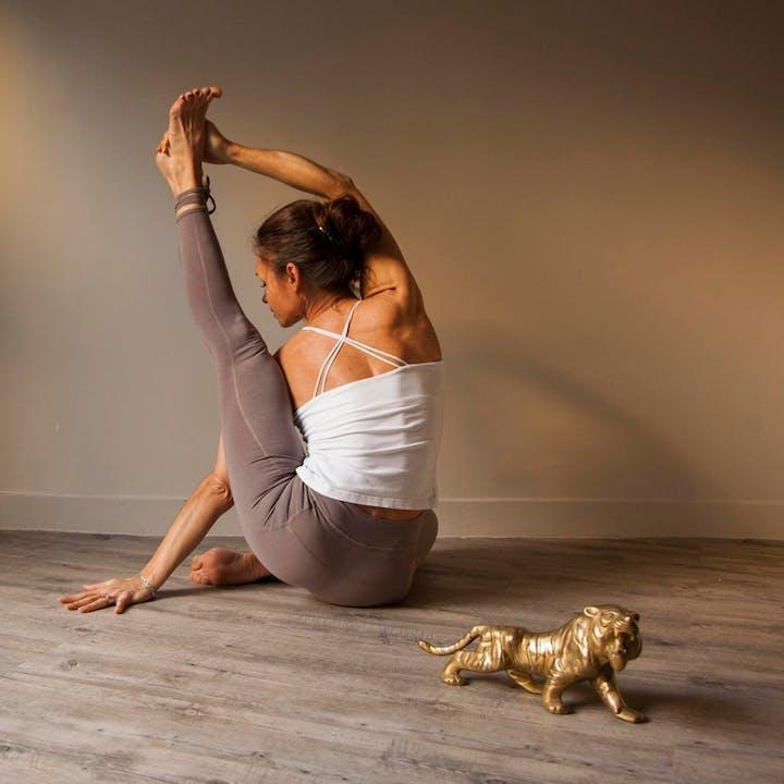 Le Tigre Yoga Club : Cours de yoga, méditation, pilates et plus