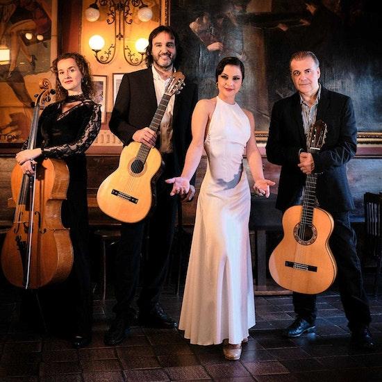 Mediterránean Guitar: flamenco en concierto