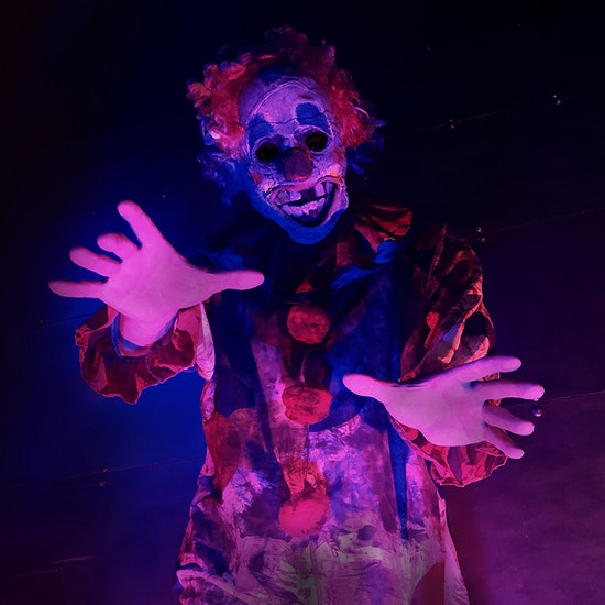 Haunted House - The Clown Academy